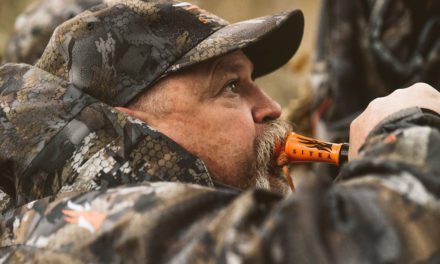 Sitka Gear Releases '25 Horse' Film on Duck Hunting Timber